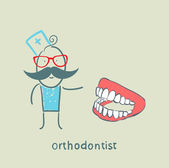 Orthodontist with the jaw — Stock Vector