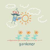 Gardener draws sun flower — Stock Vector