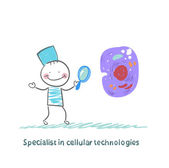 Specialist in cellular technologies is looking through a magnifying glass on a cell — Stockvektor