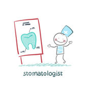 Stomatologist says a presentation on the tooth — Stock Vector