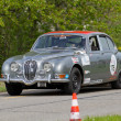 Vintage race touring car Jaguar 3.8 S from 1965 — Stock Photo #12486434