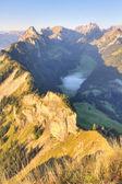 孤立的深谷瑞士 — 图库照片