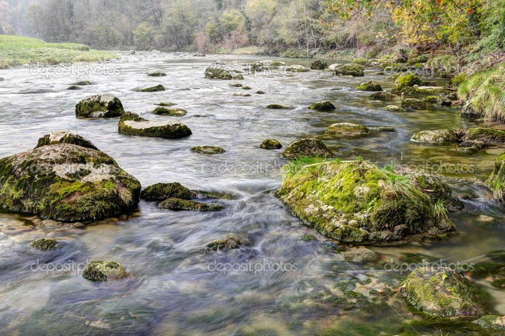 清洁, 清除,森林流飞溅下来在秋天树林里的苔藓石头 — 照片作者 m