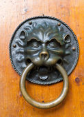 Lion door knocker — Stock Photo