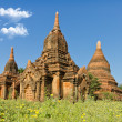 Stock Photo: Temple in Bagan, Burma