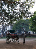 Horse carriage in Burma — Stock Photo