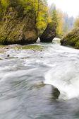Autumn forest stream — Stock Photo