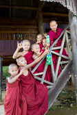 Group of buddhist monk boys poses — Stock Photo