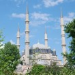 Selimiye Mosque in Edirne, Turkey — Stock fotografie