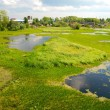 Northern DvinRiver in Arkhangelsk — Stock Photo #17636031