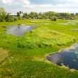 Northern Dvina River in Arkhangelsk — Stock Photo