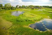 Northern Dvina River in Arkhangelsk — Stock Photo