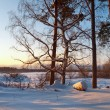 Winter landscape on sunset — Stock Photo