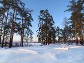 Paysage d'hiver sur coucher de soleil — Photo