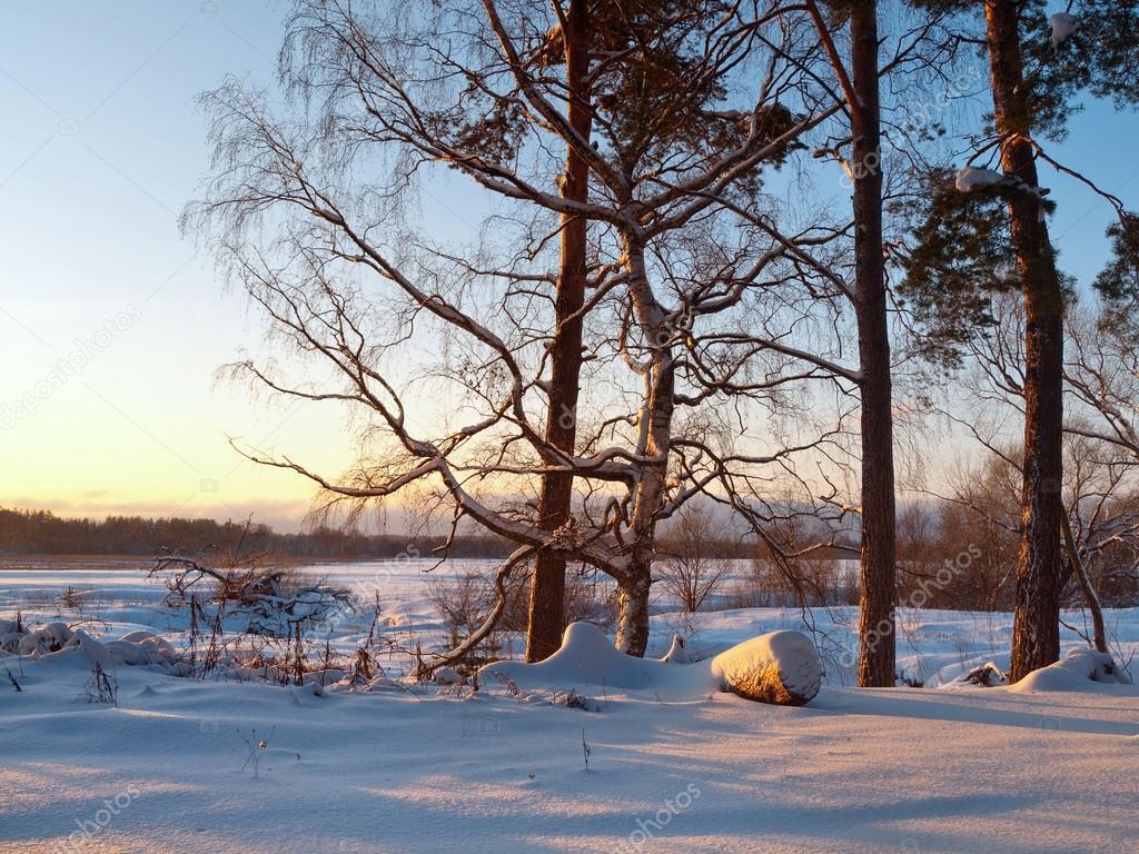 Paesaggio invernale sul tramonto foto stock kvinoz for Disegni paesaggio invernale