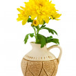 Yellow chrysanthemum in the vase — Stock Photo