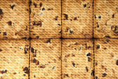 Close up of delicious raisin cookies background — Stock Photo