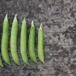 Peas in a Pod — Stock Photo