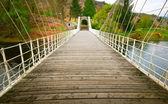 İskoçya'da köprü — Stok fotoğraf