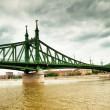 Stock Photo: Famous Liberty bridge of Budapest
