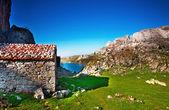 Country houses in Picos de Europa — Stock Photo