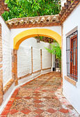 Nice patio in Cordoba — Stock Photo