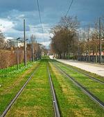 Tram rails on a green lawn — Foto de Stock