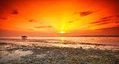 Lago balaton con un tramonto molto bello — Foto Stock