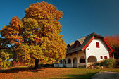 Rural house in autumn — Stock Photo
