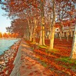 Stock Photo: Street with leaves in autumn