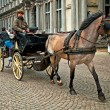 Horse-driven cab — Stock Photo