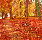 Bench with trees in autumn — Stock Photo