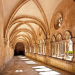 Cloister of the famous cathedral of Leon — Stock Photo