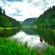 Summer landscape of a nice lake — Foto Stock