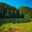 Famous Red Lake in Transylvania — Foto de Stock