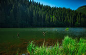 Famous Red Lake in Transylvania — Stock Photo