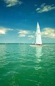 белые парусники на озере балатон — Стоковое фото