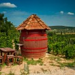 Barrel and table at the vineyard — Stock Photo