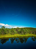 Summer landscape of a nice lake — Stock Photo