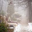 Stock Photo: Foggy cemetery