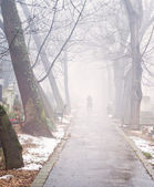Foggy cemetery — Stock Photo
