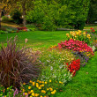 Stock Photo: Manicured flower garden