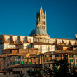 Stock Photo: Panoramof Siena
