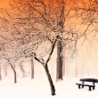 Nice winter scene — Stock Photo #37866289