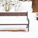Snowy bench — Stock Photo #43484225