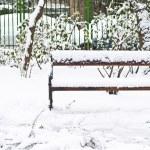 Snowy bench — Stock Photo #43484717