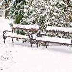 Snowy bench — Stock Photo #43515339