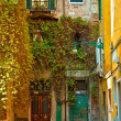 Nice old houses in Venice — Stock Photo #47694955