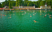 The famous Heviz thermal lake in Hungary — Stock Photo