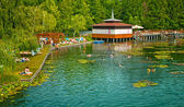 The famous Heviz thermal lake — 图库照片